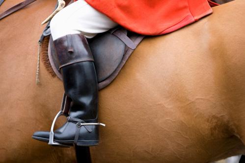 堅牢な馬具の皮革